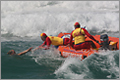 Image: Surf Lifesaving - An Australian icon in transition