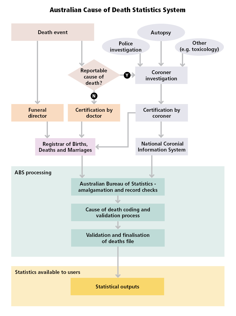 Diagram: Australian Cause of Death Statistics System