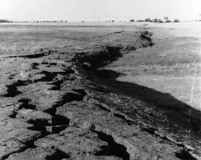 Photograph: Meckering earthquake