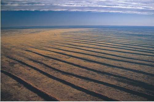 S10 The heart of the Australian continent is ringed by vast dune fields, such as the Simpson Desert. These sand ridges are aligned with the dominant wind patterns of 20,000 years ago. Photograph by Mike Gillam.