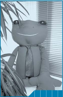 The ABS' Green Team mascot, Mr Frog, has been attending 'green' functions during 2007–08.