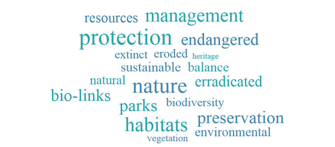 Image: Conservation word cloud